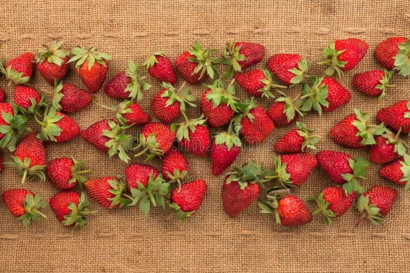 Οι φράουλες βρίσκονται sackcloth στοκ φωτογραφίες με δικαίωμα ελεύθερης χρήσης