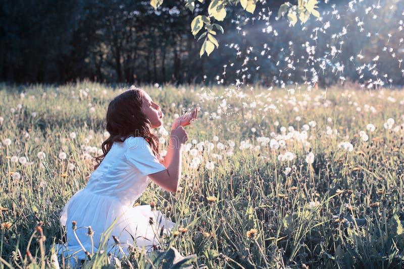 Οι φυσώντας σπόροι κοριτσιών εφήβων από μια πικραλίδα λουλουδιών σταθμεύουν την άνοιξη στοκ εικόνες
