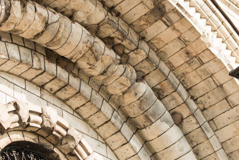 Οι φωλιές καταπίνουν κάτω από τους υπόγειους θαλάμους μιας στρογγυλής στέγης πετρών στοκ φωτογραφίες με δικαίωμα ελεύθερης χρήσης