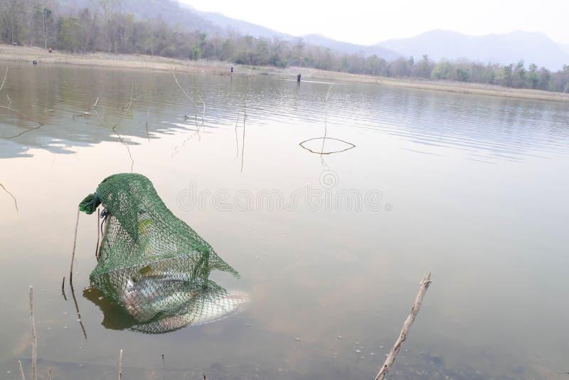 Οι χωρικοί πιάνουν τα ψάρια από την καθαρή παγίδα παγίδων ψαριών στοκ εικόνες