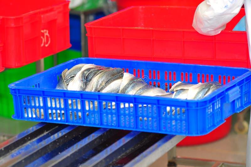 Οι λωρίδες των ψαριών είναι οι πρώτες ύλες για τα τρόφιμα επεξεργασίας σε ένα εργοστάσιο θαλασσινών στο Βιετνάμ στοκ φωτογραφίες