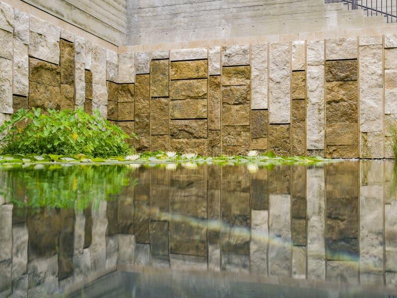Οι όμορφοι κρίνοι νερού στη βίλα Getty στοκ εικόνες