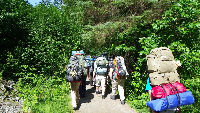 Οι backpacking οδοιπόροι ομάδας διεύθυναν στα ξύλα στοκ εικόνες με δικαίωμα ελεύθερης χρήσης