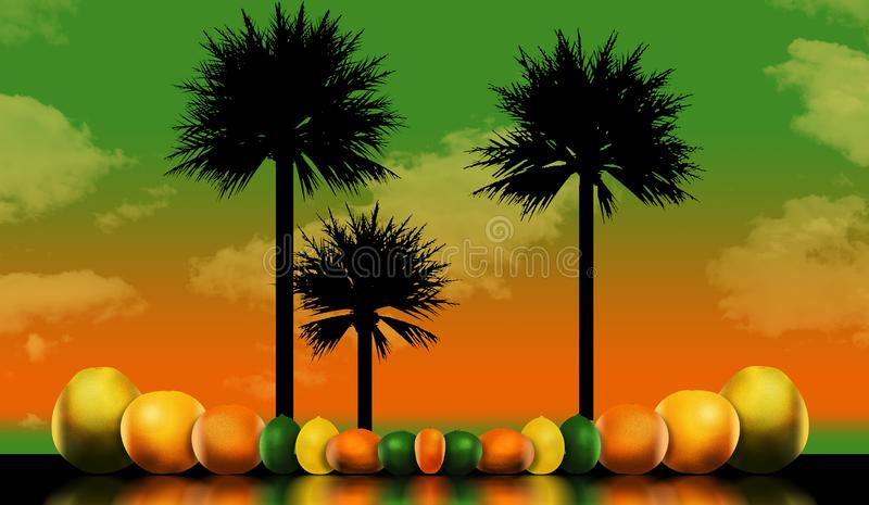 Οκτώ δημοφιλή εσπεριδοειδή απεικονίζονται σε μια απεικόνιση Αυτοί περιλαμβάνουν: pomelo, γκρέιπφρουτ, πορτοκάλι, ασβέστης, λεμόνι διανυσματική απεικόνιση