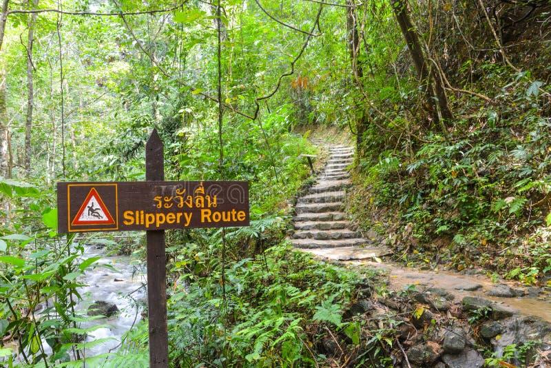 Ολισθηρό σημάδι διαδρομών κατά μήκος του τρόπου στον καταρράκτη στο τροπικό δάσος στοκ εικόνα με δικαίωμα ελεύθερης χρήσης