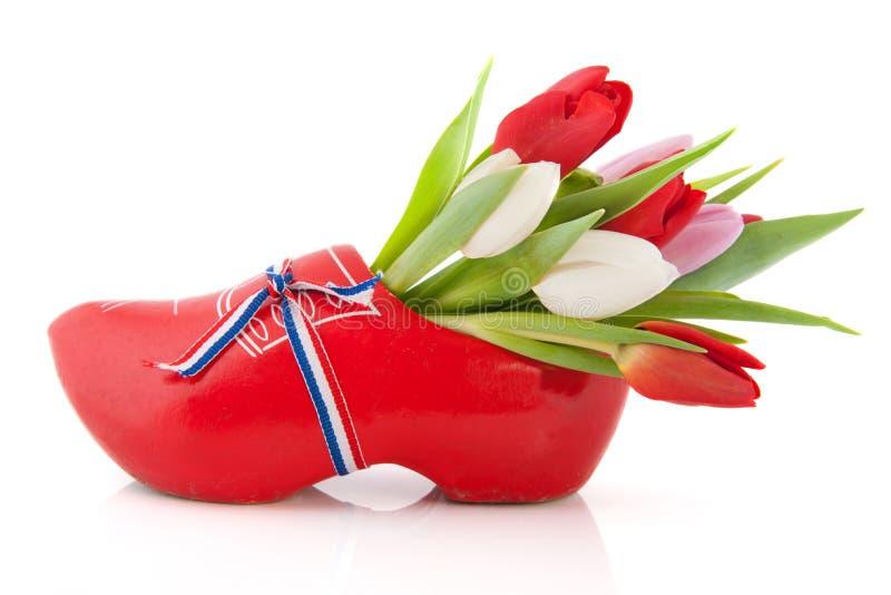 Download Ολλανδία στοκ εικόνες. εικόνα από κορδέλλα, λουλούδια - 22785182