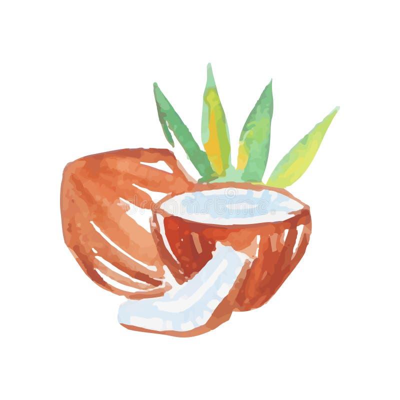 Ολόκληρα και σπασμένα μισά καρύδων με το γάλα και τους πράσινους φοίνικες Ζωηρόχρωμη ζωγραφική watercolor καρπός τροπικός φυσικός διανυσματική απεικόνιση