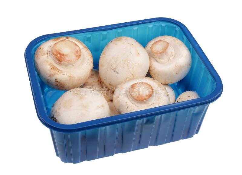 Ολόκληρα φρέσκα champignon μανιτάρια στην μπλε απομονωμένη μακροεντολή πλαστικών εμπορευματοκιβωτίων στοκ φωτογραφία με δικαίωμα ελεύθερης χρήσης