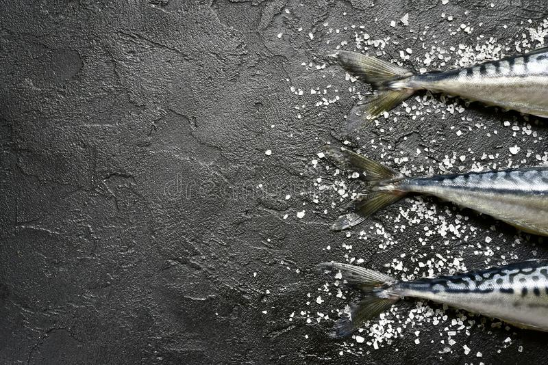 Ολόκληρο ακατέργαστο οργανικό σκουμπρί ψαριών με το άλας θάλασσας Τοπ άποψη με το αντίγραφο στοκ εικόνες με δικαίωμα ελεύθερης χρήσης