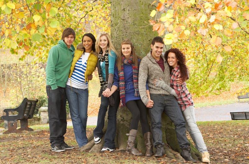 Ομάδα έξι εφηβικών φίλων που κλίνουν ενάντια στο δέντρο στοκ φωτογραφία