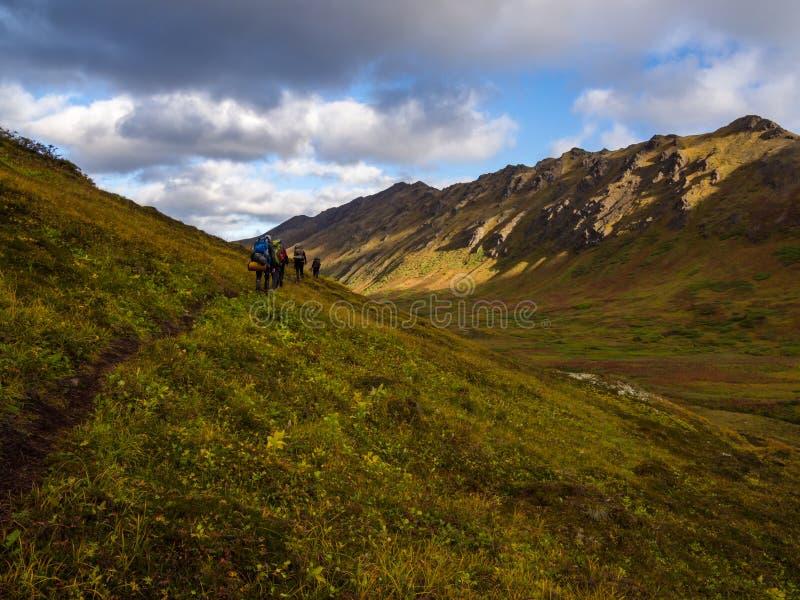 Ομάδα ίχνους Backpackers, φθινόπωρο στην κοιλάδα της Αλάσκας στοκ εικόνες