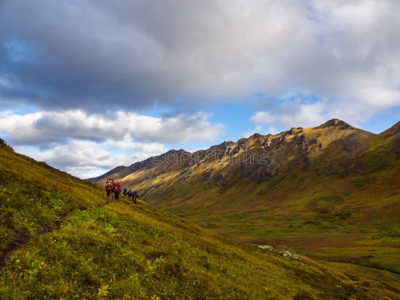 Ομάδα ίχνους Backpackers, φθινόπωρο στην κοιλάδα της Αλάσκας στοκ φωτογραφίες