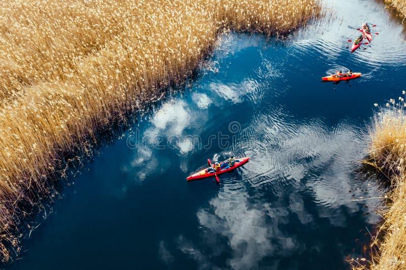 Ομάδα ανθρώπων στα καγιάκ μεταξύ των καλάμων στον ποταμό φθινοπώρου στοκ εικόνα