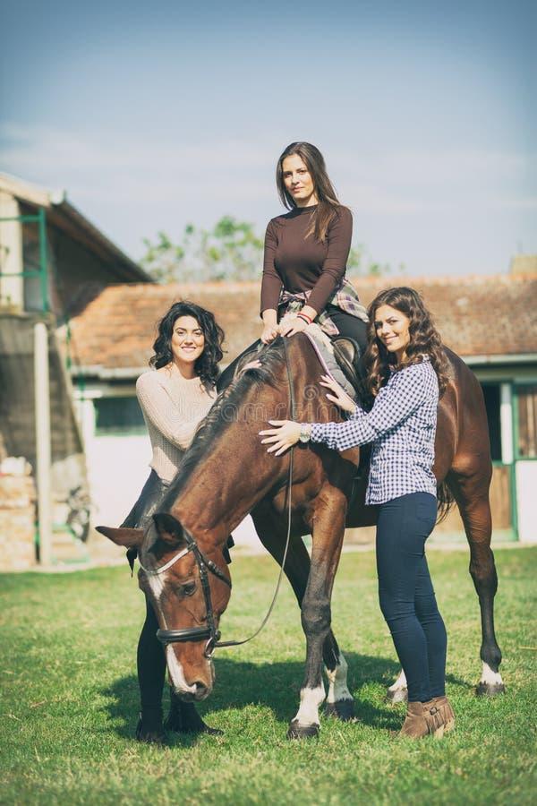 Ομάδα γυναίκας αναβατών με το άλογο, αναψυχή στοκ φωτογραφίες με δικαίωμα ελεύθερης χρήσης