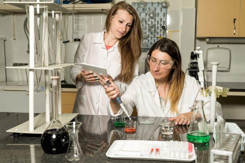 Ομάδα δύο θηλυκών εργαστηριακών τεχνικών που εργάζονται στο χημικό ή φαρμακευτικό εργαστήριο στοκ εικόνα με δικαίωμα ελεύθερης χρήσης