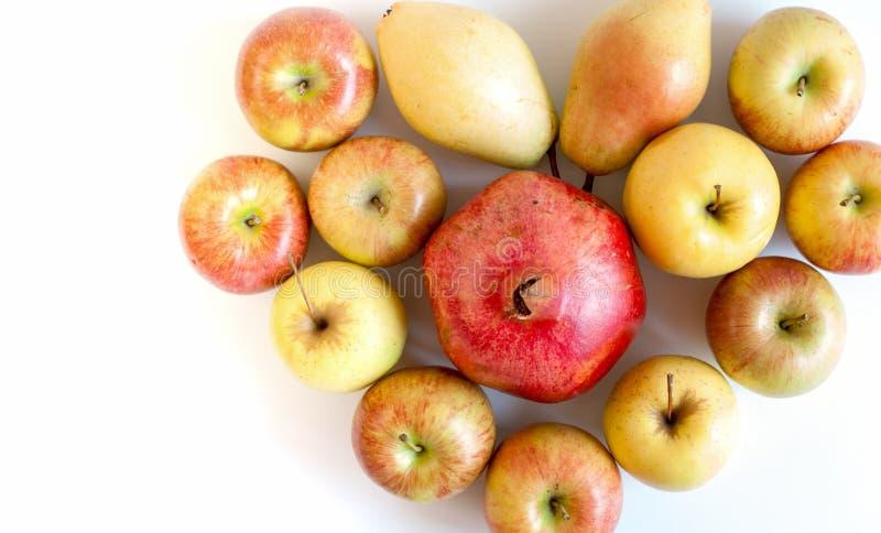 Ομάδα ζωηρόχρωμων ώριμων φρούτων με μορφή άσπρου υποβάθρου hearton με το διάστημα αντιγράφων στοκ φωτογραφία