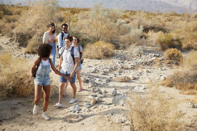 Ομάδα νέων φίλων που μέσω της επαρχίας ερήμων από κοινού στοκ εικόνες με δικαίωμα ελεύθερης χρήσης