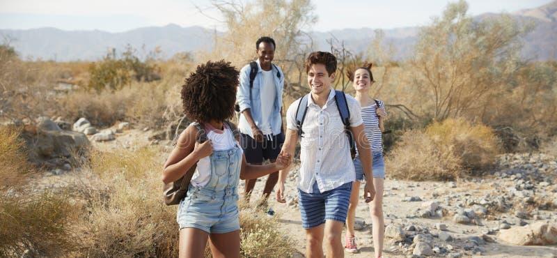 Ομάδα νέων φίλων που μέσω της επαρχίας ερήμων από κοινού στοκ εικόνες