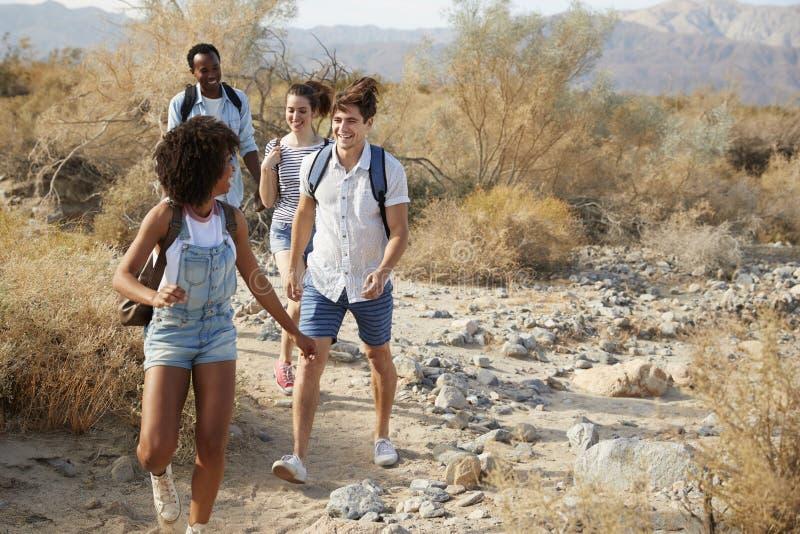 Ομάδα νέων φίλων που μέσω της επαρχίας ερήμων από κοινού στοκ φωτογραφίες