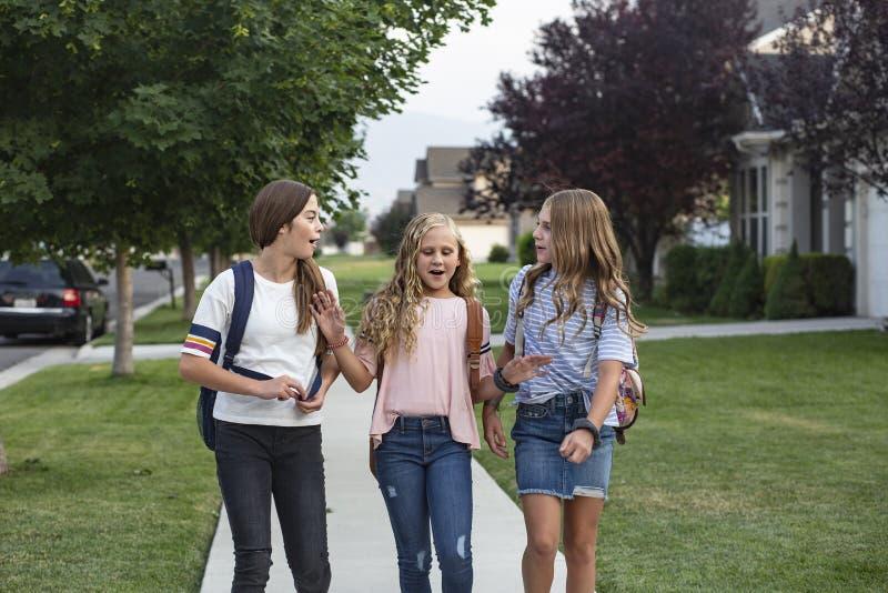 Ομάδα νεαρών φίλων και μαθητών που μιλάνε μαζί καθώς πηγαίνουν στο σχοΠστοκ εικόνες