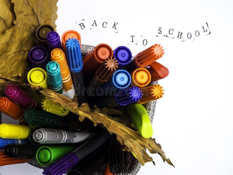 Ομάδα πίλημα-τοποθετημένων αιχμή χρώμα μανδρών σε ένα κιβώτιο, φύλλα φθινοπώρου, άσπρο υπόβαθρο, γειά σου σχολική έννοια, που απο στοκ εικόνα με δικαίωμα ελεύθερης χρήσης