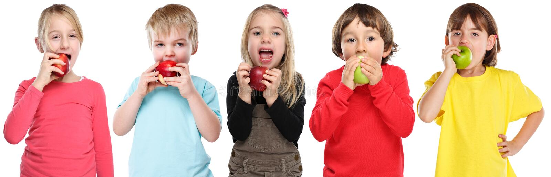 Ομάδα παιδιών παιδιών που τρώνε την πτώση φθινοπώρου φρούτων μήλων υγιή που απομονώνει στο λευκό στοκ εικόνες