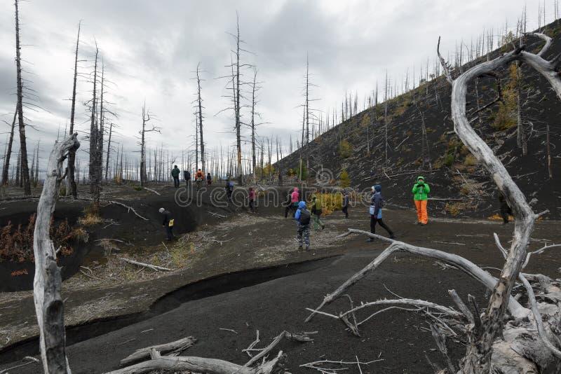 Ομάδα περιπάτων τουριστών και ταξιδιωτών στο νεκρό ξύλινο νεκρό δάσος στοκ φωτογραφία