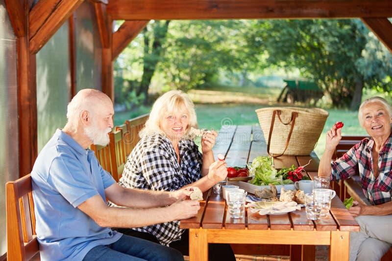 Ομάδα πρεσβυτέρων που έχουν τα τρόφιμα πικ-νίκ στον κήπο στοκ φωτογραφία