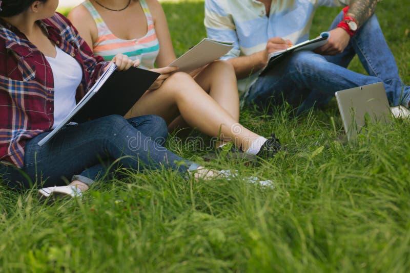 Ομάδα σπουδαστών σε ένα πάρκο στοκ εικόνα