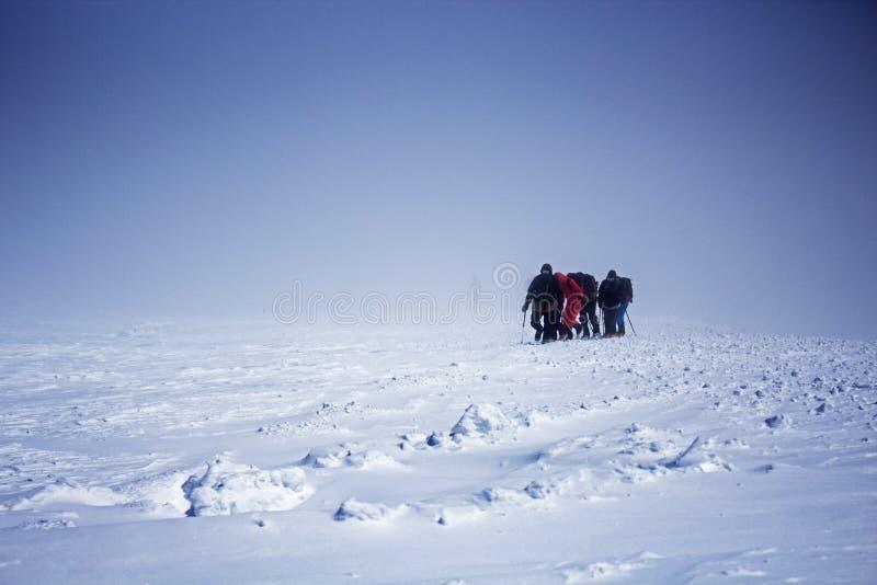 Ομάδα τουριστών που πηγαίνουν επάνω στην κορυφή Elbrus στοκ εικόνα με δικαίωμα ελεύθερης χρήσης