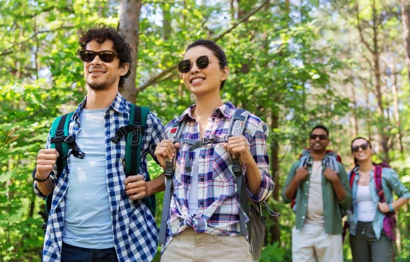 Ομάδα φίλων με τα σακίδια πλάτης που στο δάσος στοκ φωτογραφία με δικαίωμα ελεύθερης χρήσης