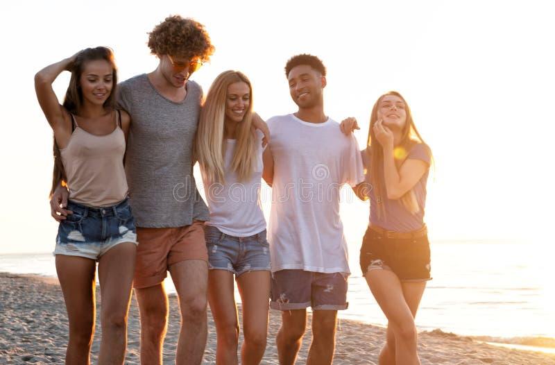 Ομάδα φίλων που έχουν τη διασκέδαση στην παραλία Έννοια του καλοκαιριού στοκ εικόνες