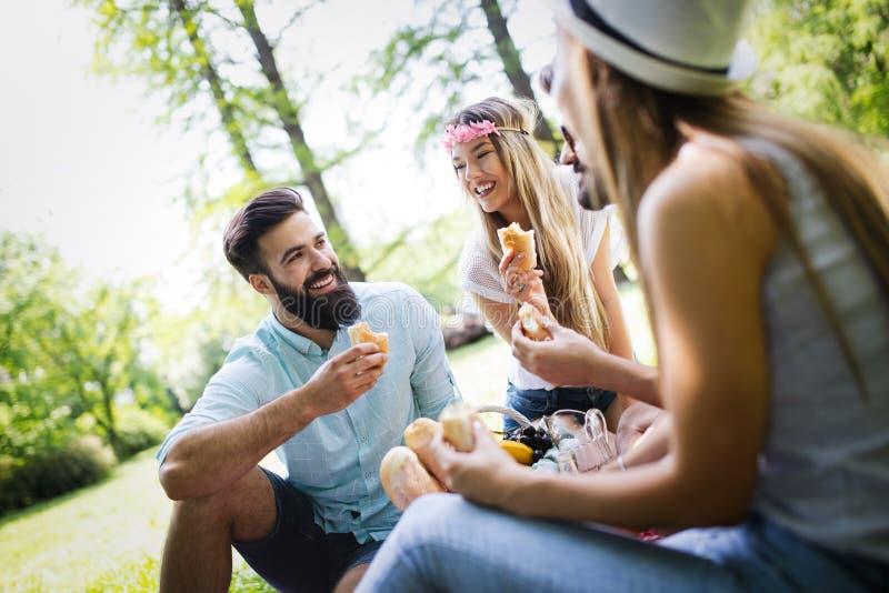 Ομάδα φίλων που έχουν το μεγάλο χρόνο στο πικ-νίκ στη φύση στοκ φωτογραφίες