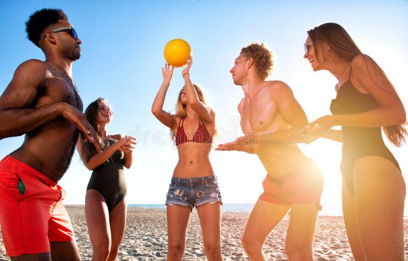 Ομάδα φίλων που παίζουν volley παραλιών στην παραλία στοκ φωτογραφία με δικαίωμα ελεύθερης χρήσης