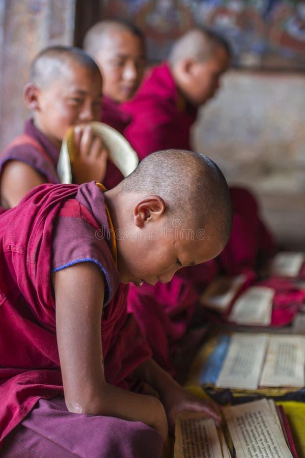 Ομάδα Bhutanese νέων μοναχών αρχαρίων Himalayan που κάθονται στο πάτωμα και που εκθέτουν, Μπουτάν στοκ φωτογραφίες