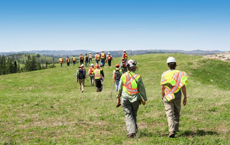Ομάδα εργαζομένων hardhats που περπατούν και που επιθεωρούν τον τομέα χλόης στοκ φωτογραφίες με δικαίωμα ελεύθερης χρήσης
