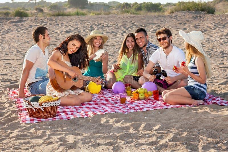 Ομάδα ευτυχών νέων που έχουν ένα πικ-νίκ στην παραλία στοκ εικόνες