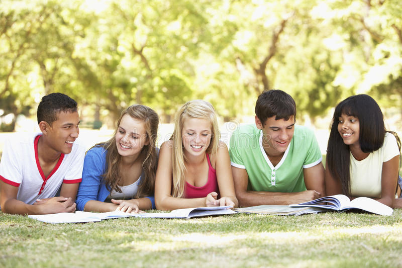 Ομάδα εφηβικών φίλων που μελετούν στο πάρκο στοκ εικόνες