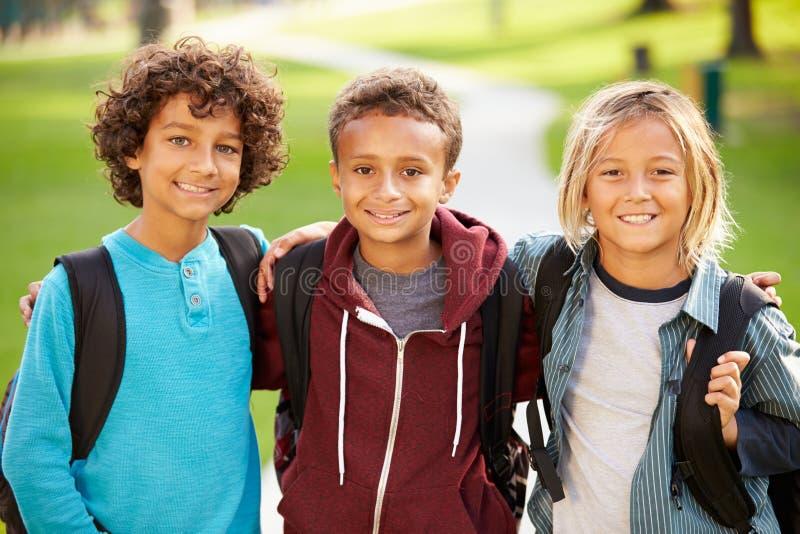Ομάδα νέων αγοριών που κρεμούν έξω στο πάρκο από κοινού στοκ φωτογραφία με δικαίωμα ελεύθερης χρήσης