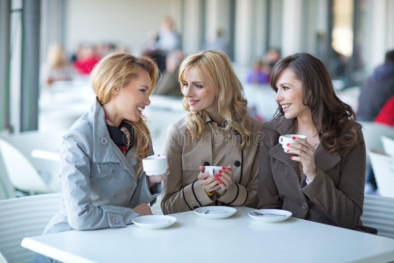 Ομάδα νέων γυναικών που πίνουν τον καφέ στοκ εικόνες