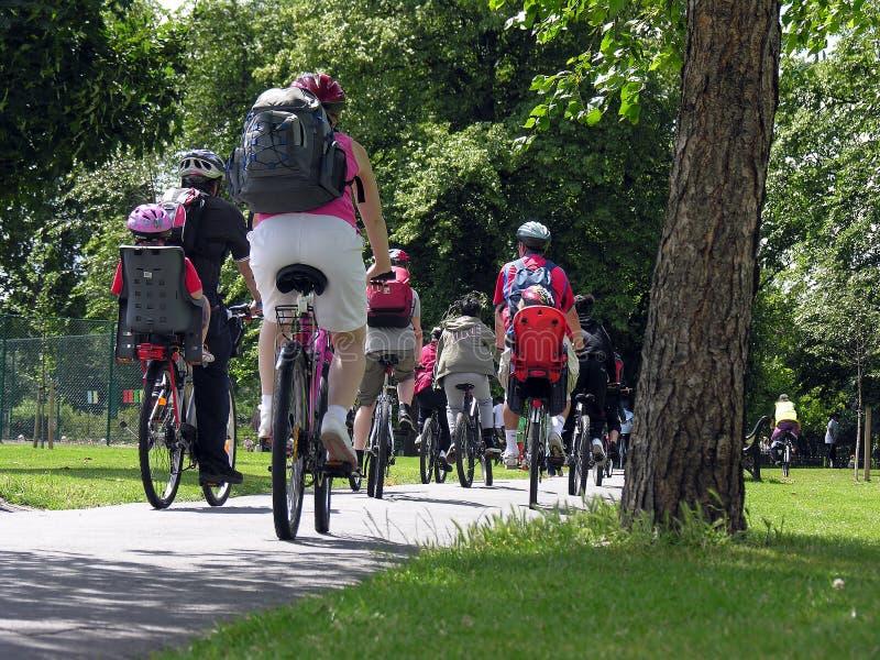 Ομάδα ποδηλατών στο πάρκο στοκ φωτογραφία με δικαίωμα ελεύθερης χρήσης