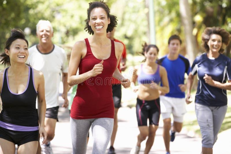 Ομάδα δρομέων Jogging μέσω του πάρκου στοκ φωτογραφίες