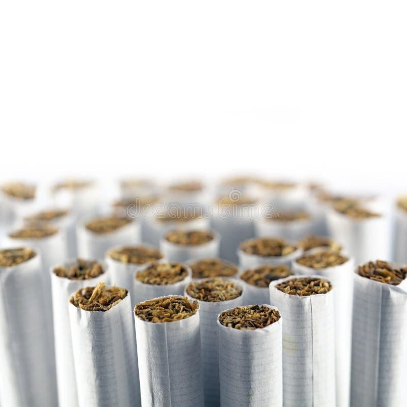 Ομάδα τσιγάρων σε ένα άσπρο κλίμα, μακρο πυροβολισμός στοκ φωτογραφία με δικαίωμα ελεύθερης χρήσης