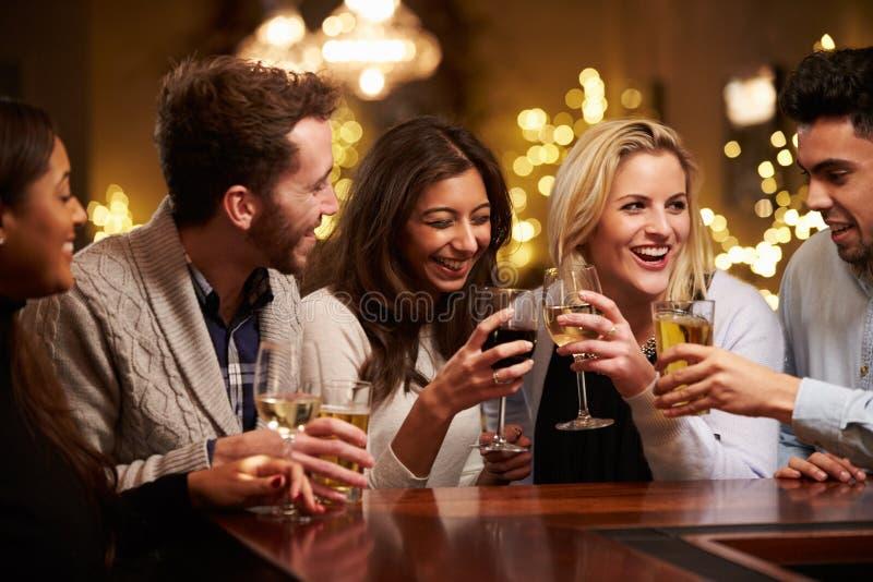 Ομάδα φίλων που απολαμβάνουν τα ποτά βραδιού στο φραγμό στοκ φωτογραφίες με δικαίωμα ελεύθερης χρήσης