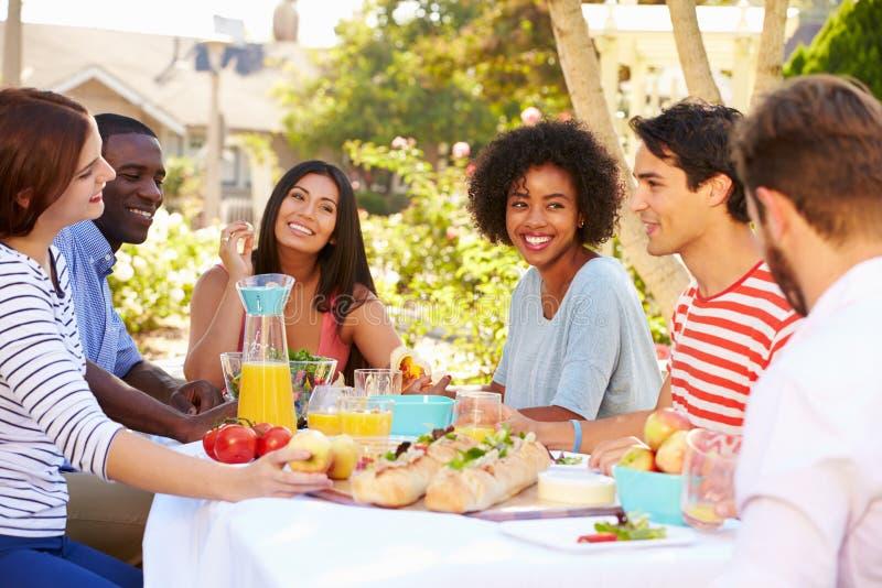 Ομάδα φίλων που απολαμβάνουν το γεύμα στο υπαίθριο κόμμα στην πίσω αυλή στοκ εικόνα