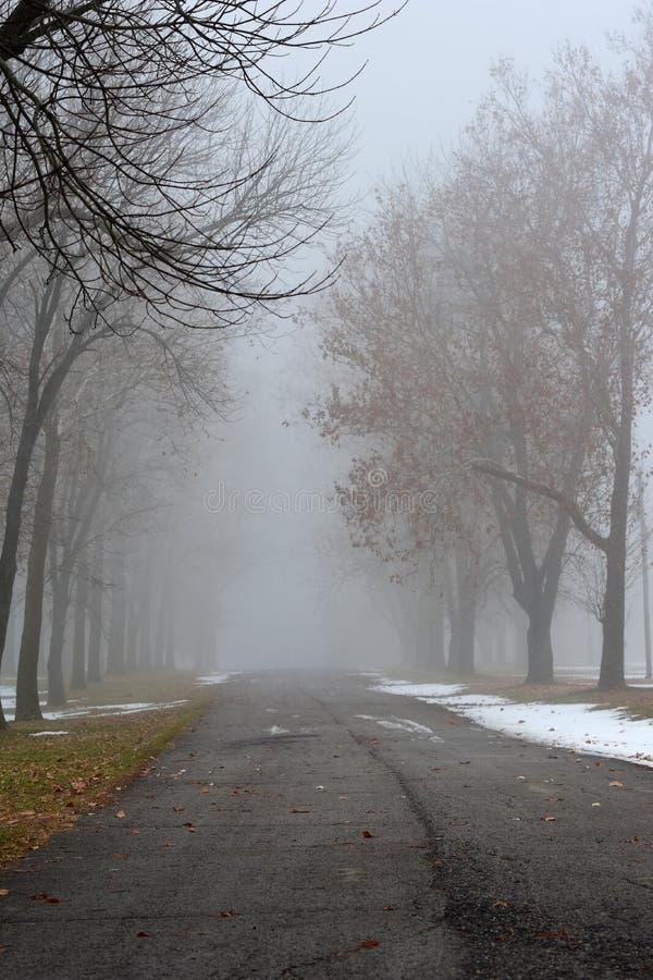 Ομίχλη για πτώση στοκ φωτογραφία με δικαίωμα ελεύθερης χρήσης