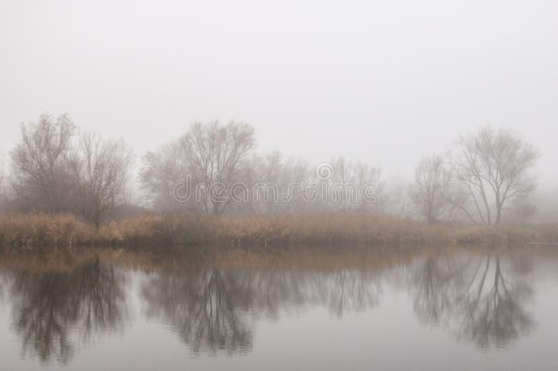 Ομίχλη και λίμνη στοκ εικόνα