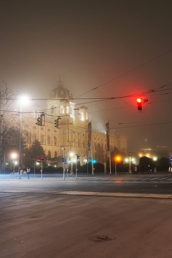 Ομίχλη και νύχτα Αυστρία τετάρτων μουσείων της Βιέννης στοκ εικόνες