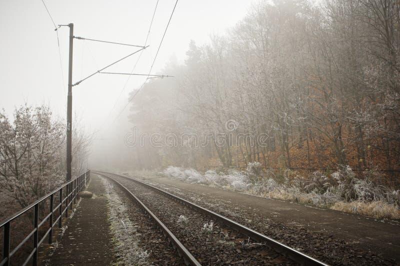 Ομίχλη μυστηρίου στοκ εικόνα με δικαίωμα ελεύθερης χρήσης