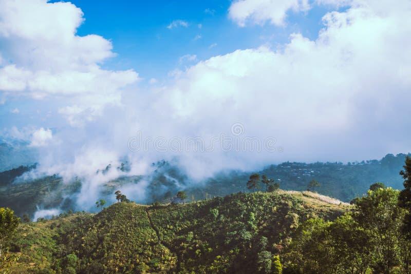 Ομίχλη πέρα από τα βουνά Στο βροχερό καιρό στην επαρχία Γεμισμένος με τα πράσινα δέντρα και την όμορφη φύση στοκ εικόνες